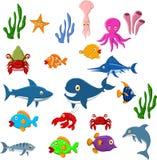 Sea life cartoon background Stock Images