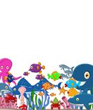 Sea life cartoon background Royalty Free Stock Image