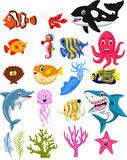 Sea life cartoon collection Royalty Free Stock Image