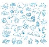 Sea life cartoon doodle,  illustration Stock Photo