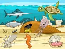 Sea life cartoon educational illustration Stock Photos