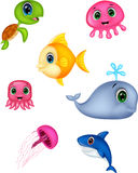 Sea life cartoon set Royalty Free Stock Photo