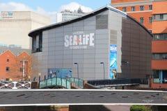 Sea Life Centre Stock Photos