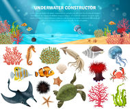 Sea Life Constructor Isolated Icons Set. Sea life animals plants and landscape cartoon icons constructor set vector illustration Stock Photography