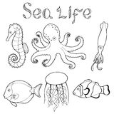 Sea life fish graphic art black white isolated illustration Stock Images