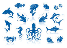 Sea life and fishes icon set. Against a white background with reflections Royalty Free Stock Image