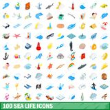100 sea life icons set, isometric 3d style. 100 sea life icons set in isometric 3d style for any design illustration vector illustration