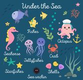Sea life, marine animals set with underwater landscape - seahorse, star, octopus, fish, jellyfish, crab. Cute cartoon. Vector illustration Royalty Free Stock Images