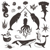 Sea life, marine animals. Vintage hand drawn elements Royalty Free Stock Photos