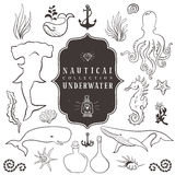 Sea life, marine animals. Vintage hand drawn elements royalty free illustration