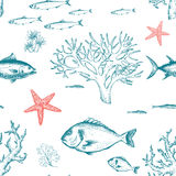 Sea life pattern Royalty Free Stock Photography