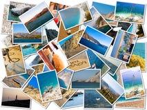 Sea life photo collage Stock Photography