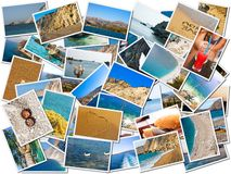 Sea life photo collage. Background surface filled with sea life photos Royalty Free Stock Images
