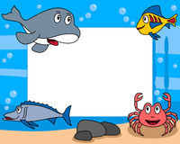 Sea Life Photo Frame [3]. Photo frame, post card or page for your scrapbook. Subject: a funny underwater scene with four cartoon marine animals (an orca, two Royalty Free Stock Images