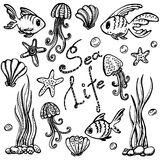 Sea life set. Hand drawn doodles Royalty Free Stock Image