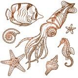 Sea Life Set Royalty Free Stock Photos