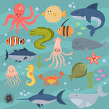 Sea life underwater cartoon animals cute marine characters fish aquarium tropical aquatic vector illustration. Sea life underwater cartoon animals cute marine Royalty Free Stock Image