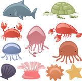 Sea life 2. Various Sea life Animals  illustration Royalty Free Stock Images
