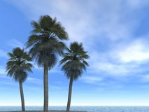 Sea-line clouds and palms. Digital artwork royalty free illustration