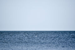 Sea line of the horizon. Sea and sky. The waves and glare of the sun are reflected from the waves of the sea. Seascape. Sea line of the horizon. Sea and sky Royalty Free Stock Image