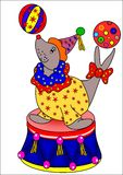 Sea Lion and balls. Sea lion in the circus juggles with two colored balls Royalty Free Stock Photos