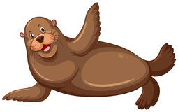 Sea lion with happy face Royalty Free Stock Photos