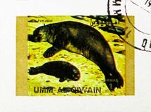 Sea Lion, Rare animals; small format serie, circa 1972. MOSCOW, RUSSIA - NOVEMBER 10, 2018: A stamp printed in Umm Al Quwain shows Sea Lion, Rare animals; small stock images