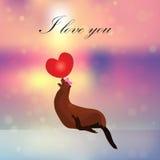 Sea Lion or seal balancing a ball Royalty Free Stock Images