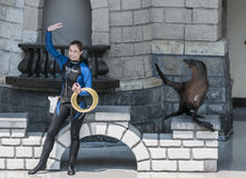 Sea lion and trainer Royalty Free Stock Image