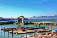 Sea lions at Pier. 39 a popular tourist attraction, it is located at the edge of Fishermans Wharf district and is close to North Beach and Embarcadero stock photos