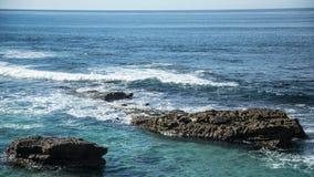 Sea Lions on Rocks Stock Image