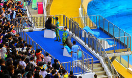Sea lions show at ocean park hong kong Stock Photo