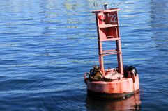 Sea lions sit on a bouy. Floating in the Pacific Ocean stock photography
