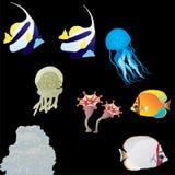 Sea live. Sea animals on a black background Stock Image