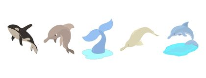 Sea mammals icon set, cartoon style Stock Photography