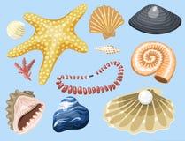 Sea marine animals and shells souvenirs cartoon vector illustration spiral tropical mollusk mussel decoration. Sea marine animals and shells souvenirs cartoon Royalty Free Stock Photography