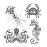 Sea marine doodle set. Sea animals seahorse octopus jellyfish and crab doodle icons set  black line design abstract vector  illustration Stock Photography