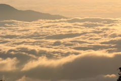 A sea of mist at dawn Royalty Free Stock Photos