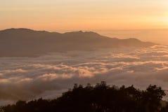 A sea of mist at dawn Stock Photos