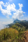 Sea of mist at Doi Pha Tang,Chiang Rai,northern Thailand. Doi Pha Tang is a viewpoint on top of a high cliff over the Thai-Laotian border affording a delightful royalty free stock photo