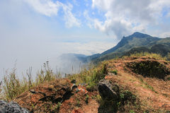 Sea of mist at Doi Pha Tang,Wiang Kaen district,Chiang Rai,Thailand. A viewpoint on top of a high cliff over the Thai-Laotian border affording a delightful royalty free stock images