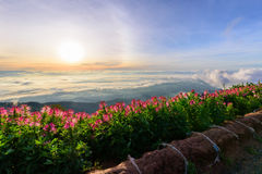 Sea of mist on high mountain Stock Photography