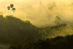 The Sea of Mist at Khao Kho. Shoot at the top of the mountian royalty free stock image