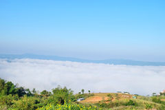 Sea mist, The sea of fog from northern thailand Stock Images