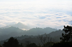 Sea of mist on sunrise. View from high mountain Stock Photo
