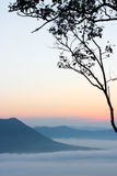 Sea of mist and sunset on mountain Royalty Free Stock Image
