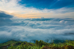 Sea of mist Stock Images