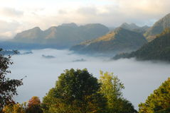 Sea of mist in Thailand Stock Photography