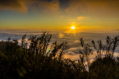 Sea of mist. View from high mountain Stock Images