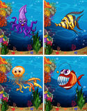 Sea monsters swimming under the sea Royalty Free Stock Images